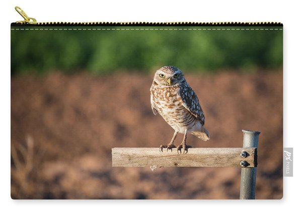 Burrowing Owl On A Perch Carry-all Pouch