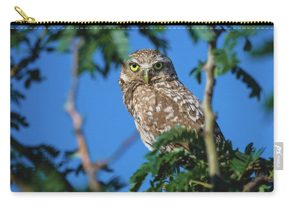 Burrowing Owl Sitting In A Tree Carry-all Pouch