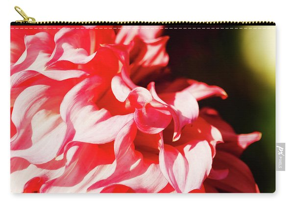Butchart Dahlia By Mike-hope Carry-all Pouch