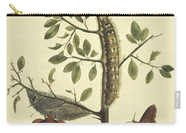 Butterflies, Caterpillars And Plants Carry-all Pouch