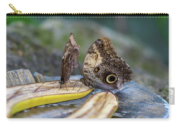 Carry-all Pouch featuring the photograph Butterflies Eating Bananas by Raphael Lopez