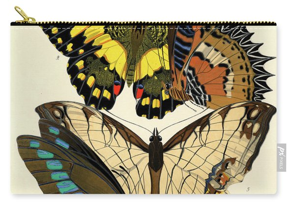 Butterflies, Plate-9  Carry-all Pouch