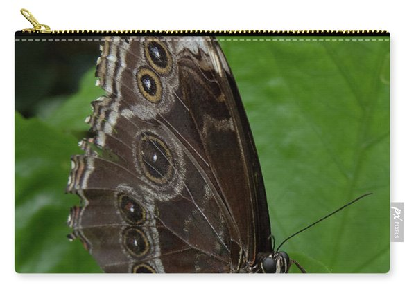 Butterfly 5 Carry-all Pouch