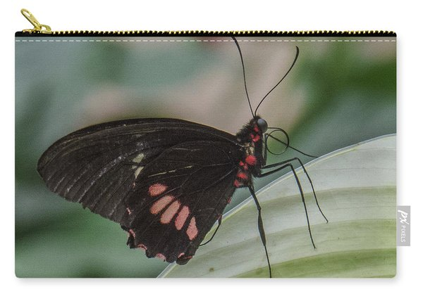 Butterfly 7 Carry-all Pouch