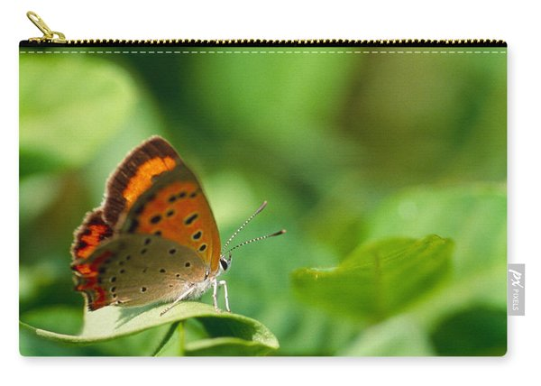 Butterfly Perching On A Leaf Carry-all Pouch