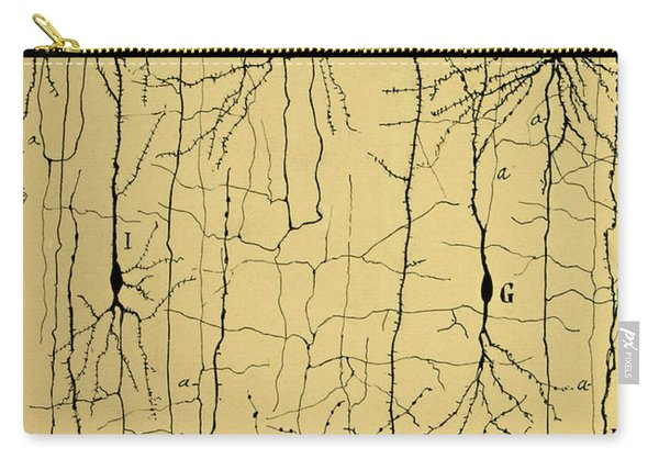 Cajal Drawing Of Microscopic Structure Of The Brain 1904 Carry-all Pouch