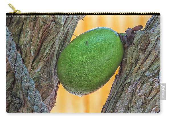 Calabash Fruit Carry-all Pouch