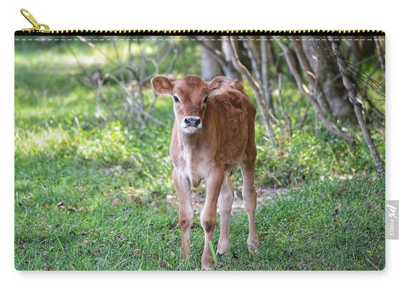 Calf  Carry-all Pouch