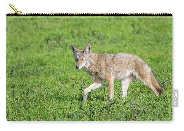 California Walk  Carry-all Pouch