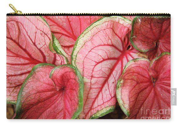 Caladium Carry-all Pouch