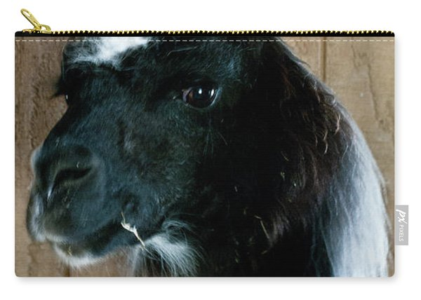 Carry-all Pouch featuring the photograph Camelid 3 by Catherine Sobredo