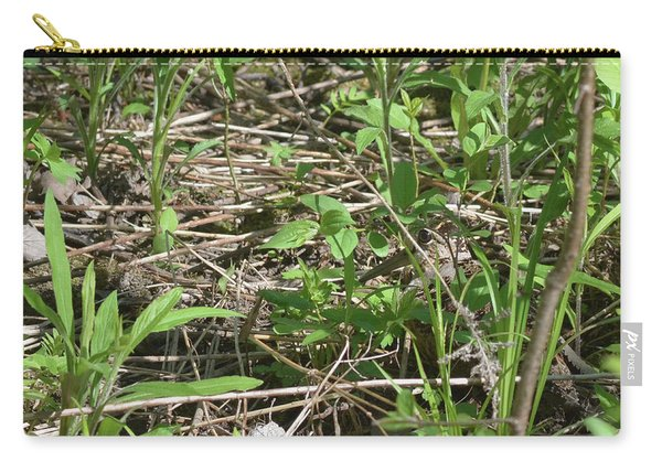 Camouflaged Eye Carry-all Pouch