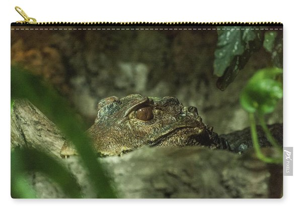 Can You See Me Carry-all Pouch