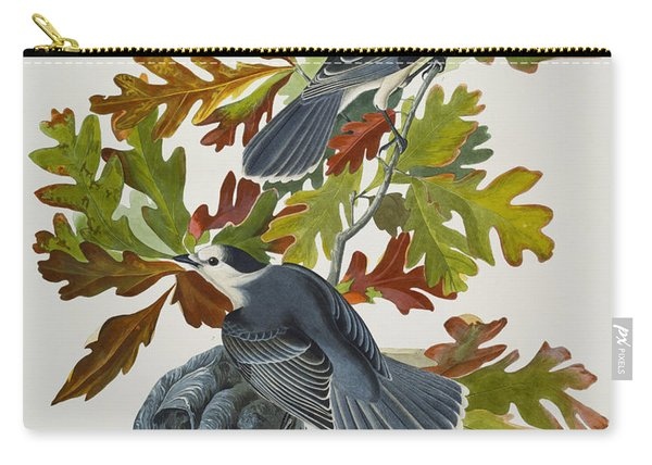 Canada Jay Carry-all Pouch