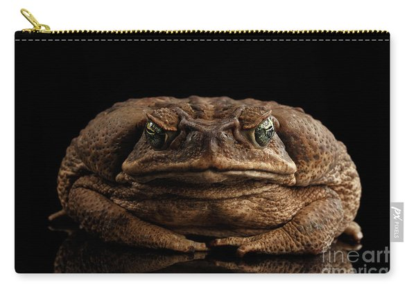 Cane Toad - Bufo Marinus, Giant Neotropical Or Marine Toad Isolated On Black Background, Front View Carry-all Pouch