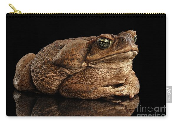 Carry-all Pouch featuring the photograph  Cane Toad - Bufo Marinus, Giant Neotropical Or Marine Toad Isolated On Black Background by Sergey Taran