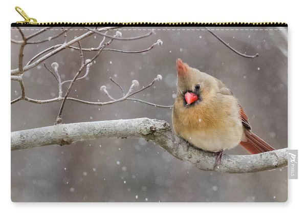 Cardinal And Falling Snow Carry-all Pouch