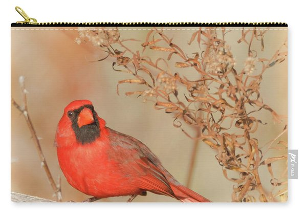 Cardinal In Fall  Carry-all Pouch