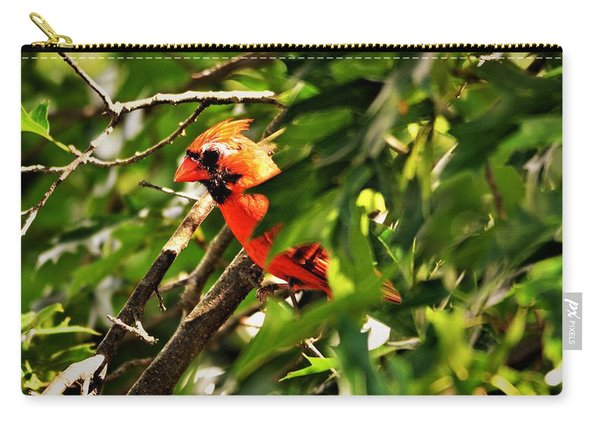 Cardinal In Tree Carry-all Pouch