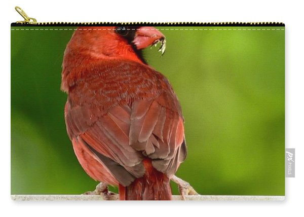 Cardinal Red Carry-all Pouch