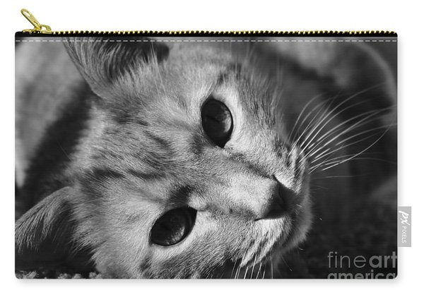 Cat Naps Carry-all Pouch