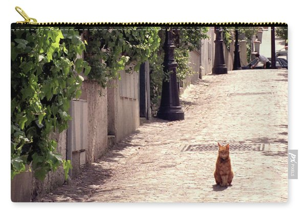 Cat On Cobblestone Carry-all Pouch