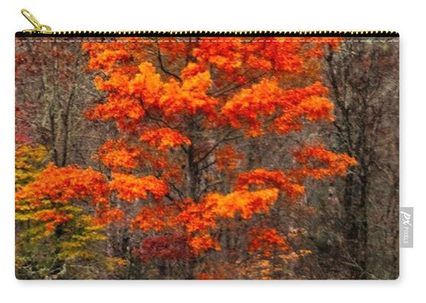 Cataloochee Color Carry-all Pouch