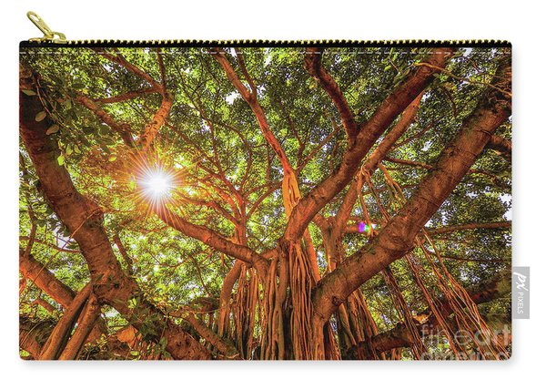 Catch A Sunbeam Under The Banyan Tree Carry-all Pouch