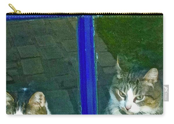 Cats On Baylor Street Carry-all Pouch