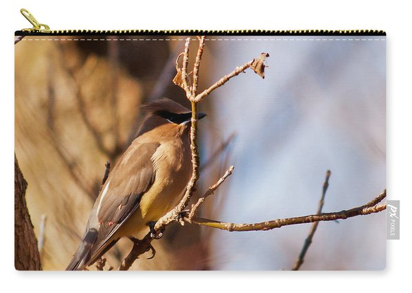 Cedar Waxwing In Autumn Carry-all Pouch