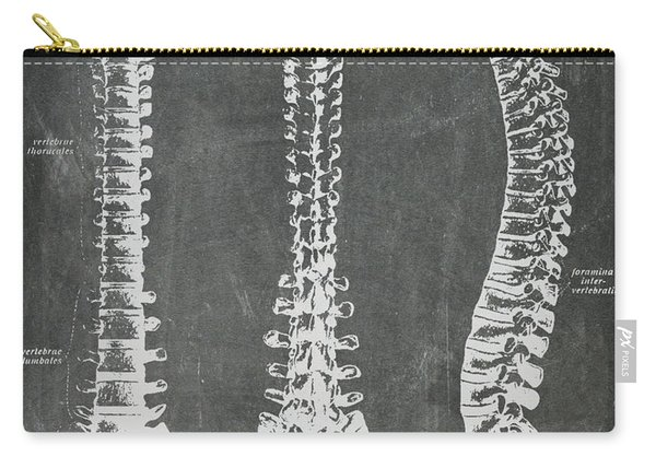 Chalkboard Anatomical Spines Carry-all Pouch