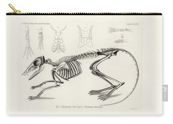 Checkered Elephant Shrew Skeleton Carry-all Pouch