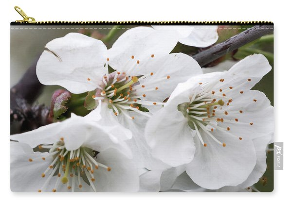 Cherry Blosoms Carry-all Pouch