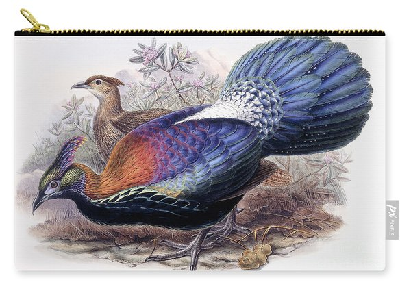Chinese Monal, Pheasant Carry-all Pouch