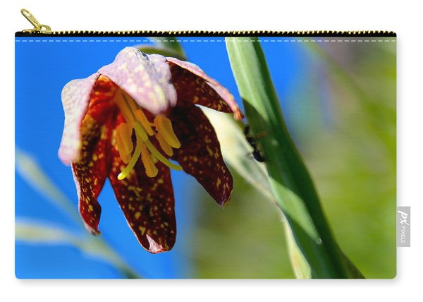 Chocolate Lily Carry-all Pouch