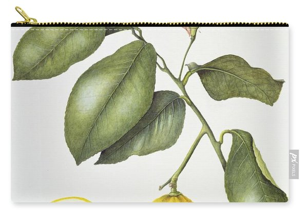Citrus Bergamot Carry-all Pouch