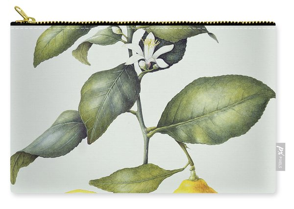 Citrus Lemon Carry-all Pouch
