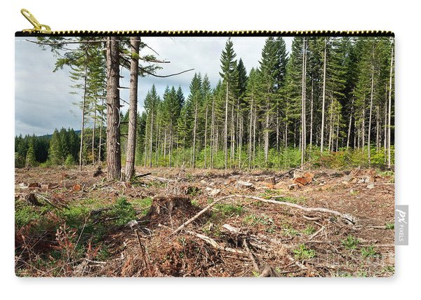 Clearcut, Douglas Fir Forest Carry-all Pouch