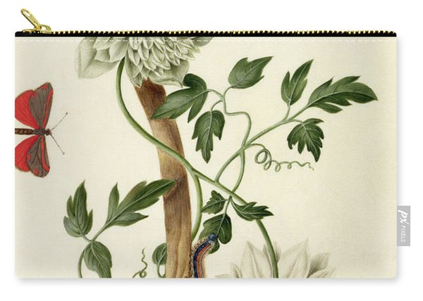 Clematis Florida With Butterfly And Caterpillar Carry-all Pouch