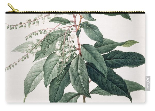 Clethra Arborea Carry-all Pouch