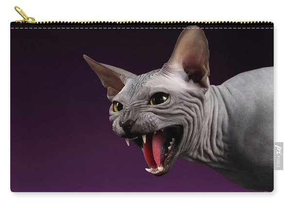 Carry-all Pouch featuring the photograph Close-up Aggressive Sphynx Cat Hisses On Purple by Sergey Taran