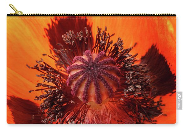 Close-up Bud Of A Red Poppy Flower Carry-all Pouch