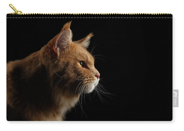 Close-up Portrait Ginger Maine Coon Cat Isolated On Black Background Carry-all Pouch