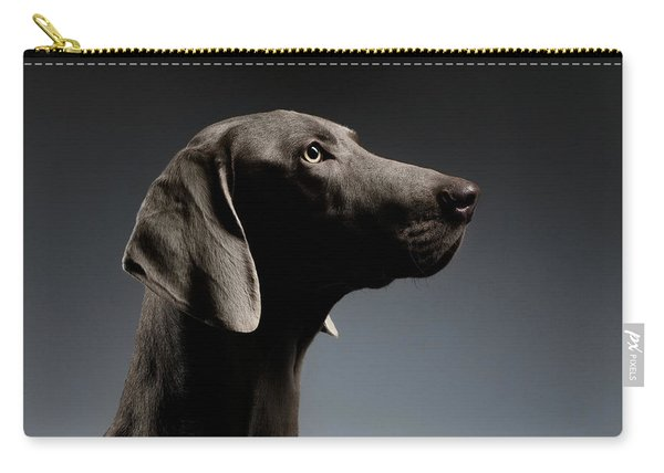 Carry-all Pouch featuring the photograph Close-up Portrait Weimaraner Dog In Profile View On White Gradient by Sergey Taran