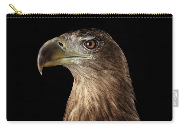 Close-up White-tailed Eagle, Birds Of Prey Isolated On Black Background Carry-all Pouch