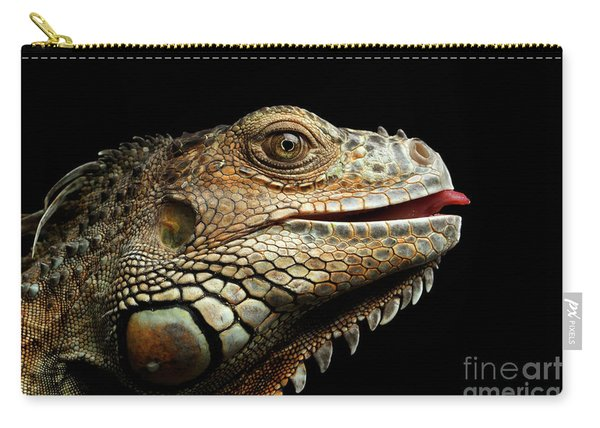 Close-upgreen Iguana Isolated On Black Background Carry-all Pouch