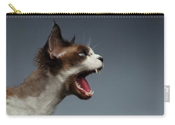 Closeup Devon Rex Hisses In Profile View On Gray  Carry-all Pouch