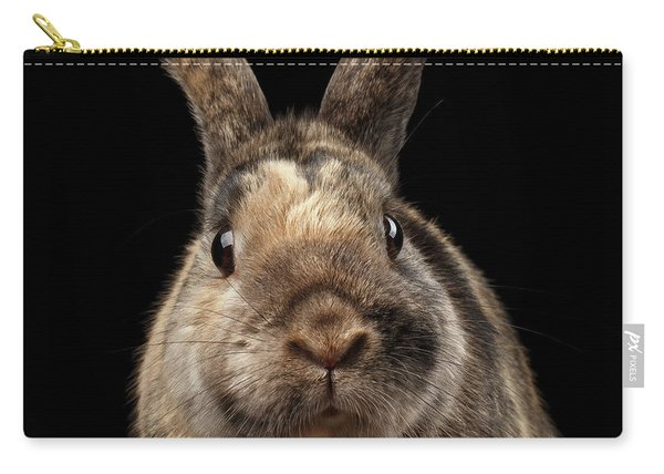 Carry-all Pouch featuring the photograph Closeup Funny Little Rabbit, Brown Fur, Isolated On Black Backgr by Sergey Taran