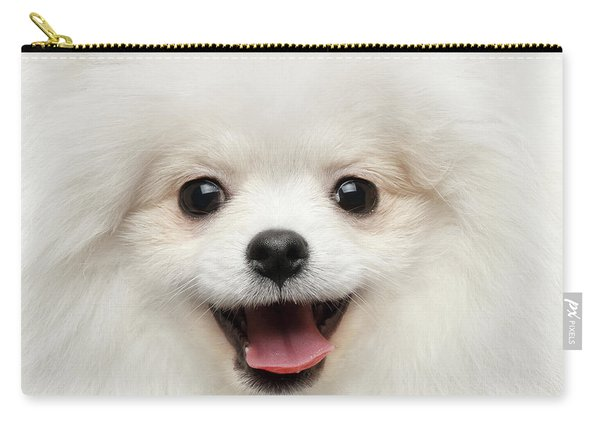 Carry-all Pouch featuring the photograph Closeup Furry Happiness White Pomeranian Spitz Dog Curious Smiling by Sergey Taran