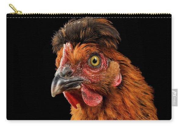 Carry-all Pouch featuring the photograph Closeup Ginger Chicken Isolated On Black Background In Profile View by Sergey Taran